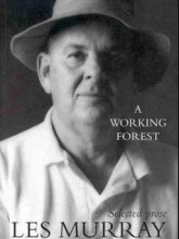 A Working Forest
